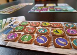 Spielertableau und Chips des Spiels Pepper & Carrot: the Potion Contest